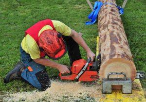 Log cutting in McKinley Landing British Columbia V1V 2B9